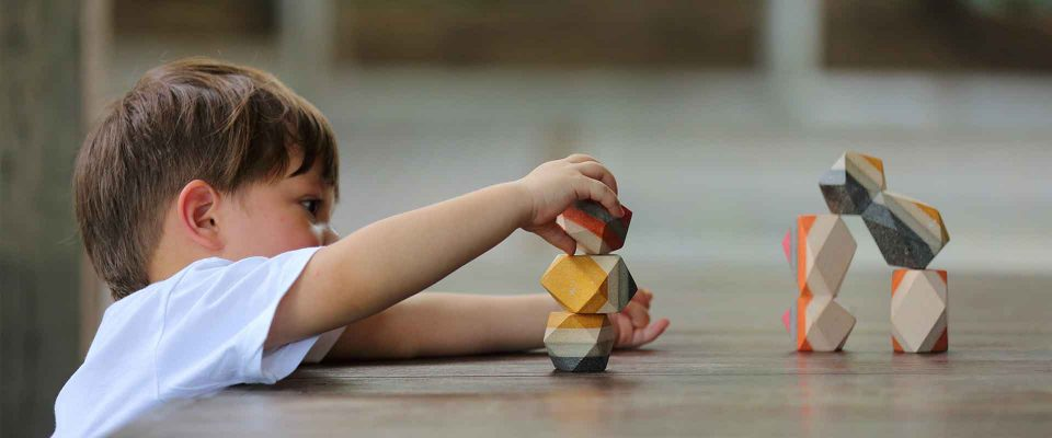 sustainable-toy-design-by-plantoys-3-start