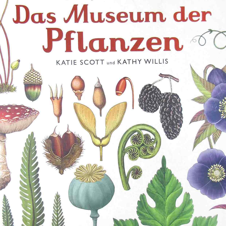 Kinderliteratur-Das-Museum-der-Pflanzen-Prestel-quad
