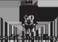 sarit-shani-hay-logo